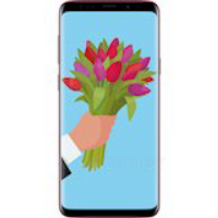Смартфон SAMSUNG Galaxy S9 4/64Gb Duos Burgundy Red (SM-G960FZRDSEK)