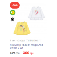 Джемпер BluKids Magic And Sweet 2 шт