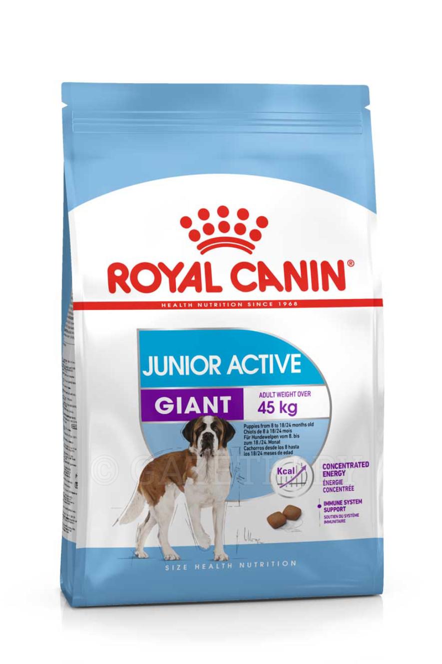 корма Royal для собак